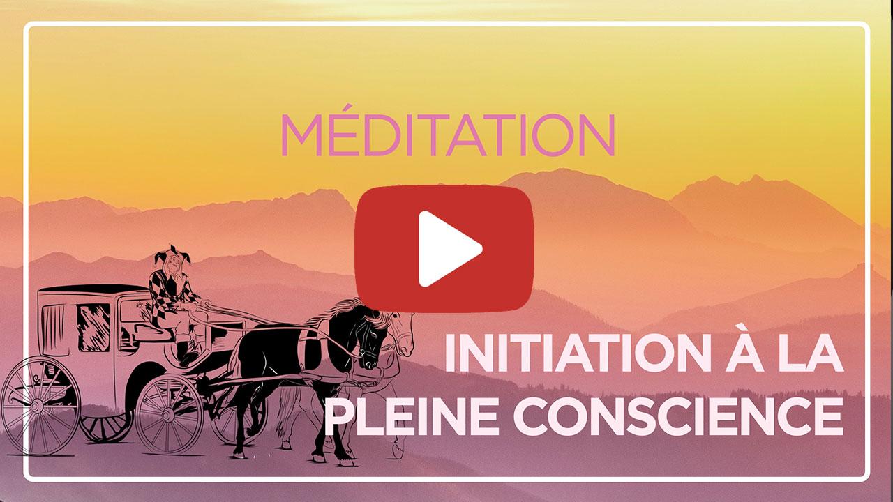 Initiation à la pleine conscience - Fabien Malgrand